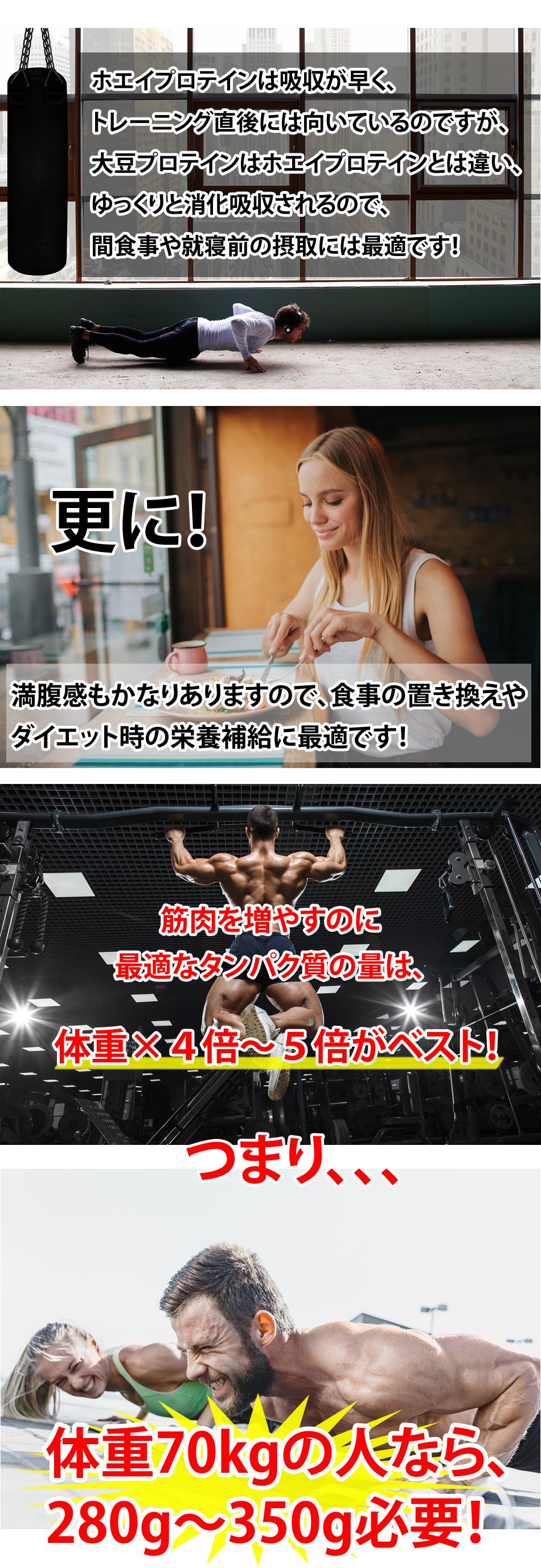 ピュア・ソイプロテイン10kg_3